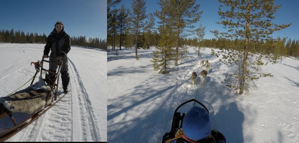 James dog sledding