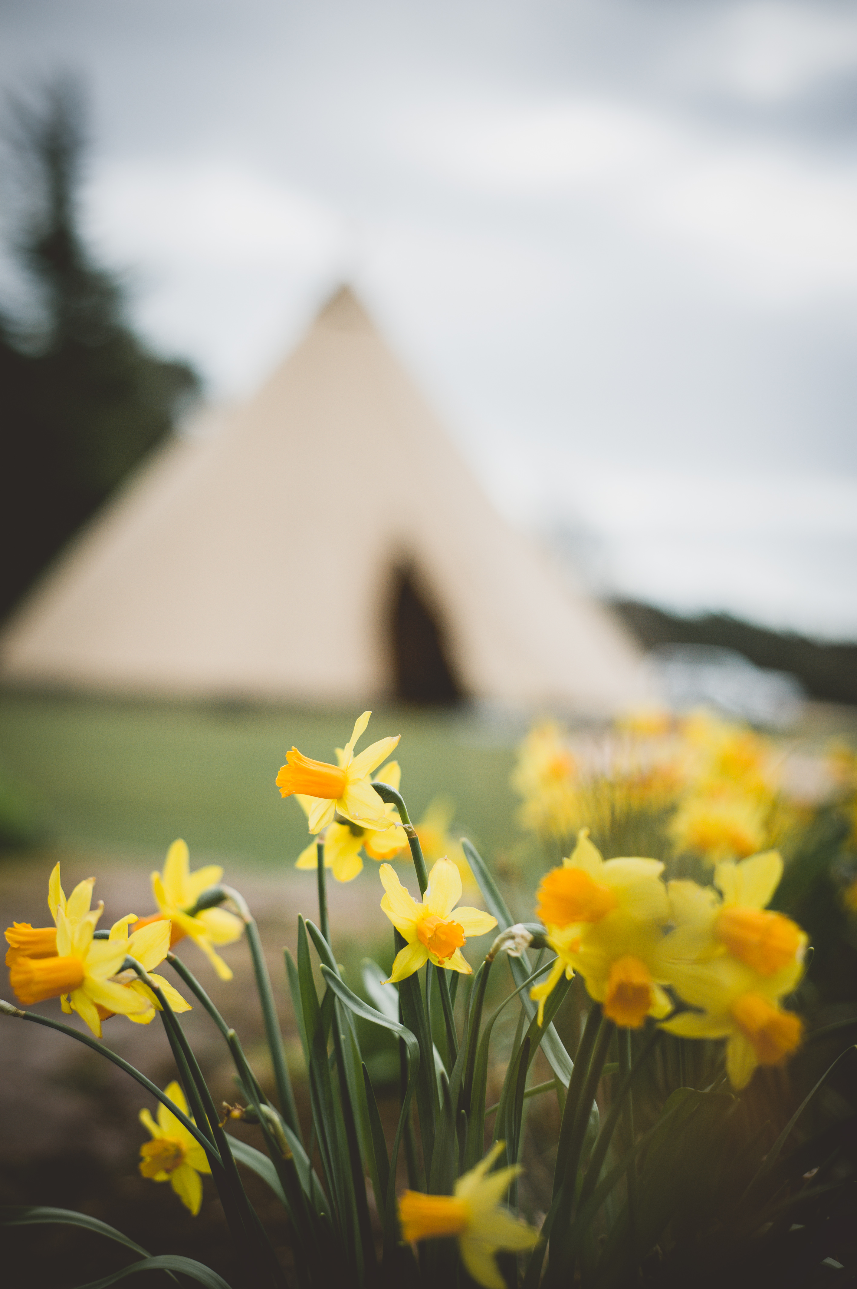 Tipi, Teepee or Marquee?
